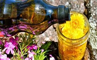 Настойка из одуванчиков для суставов на спирту — приготовление, внутреннее и наружное применение, противопоказания
