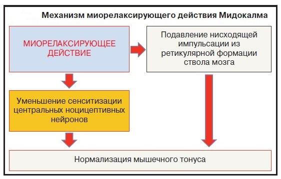 мидокалм инструкция
