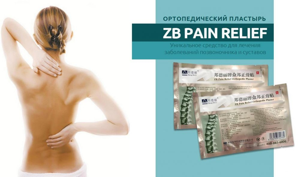 ZB Pain Relief Plaster